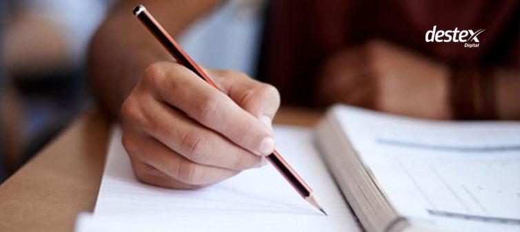 eğitim sektörü raporu