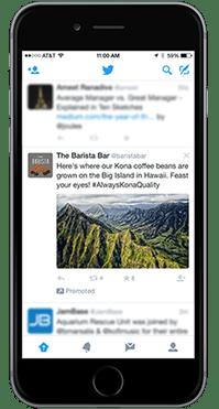 Twitter Reklam Ajansı, Twitter reklamları